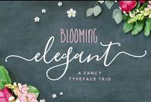 Fonts / Beautiful and creative fonts for graphic design and web design projects.