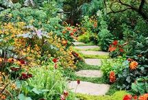 Tuintrend 2015: Unexpected Wild Garden