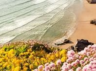 Spring at the beach! / May is almost here to remind us that next month is summer!