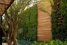 Inspo - balcony/garden