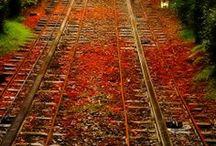 Autumn, my favorite season!