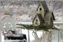 bird house・bird feeder・bird bath / by Naoko Helen Oshika