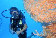 Diving for kids / Kids can dive as soon as they've reached 8 years old. They can discover scubadiving around 3 meters deep.