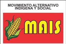 Mais - 2015 / Candidatos del Partido MAIS