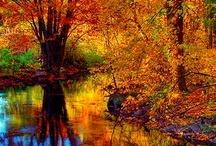 Fall...my Fav Season