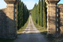 Cluti loves Tuscan Style / by Cluti