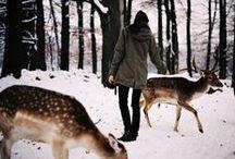 b e a s t i e s / //the wild ones// / by Sarah Kathleen