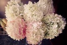 Wedding flowers / by Jessica Mitchell