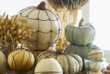 Halloween/fall decor