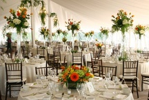 Eco-Lux weddings / Lots of lovely eco-lux wedding ideas! / by Jack Kelly