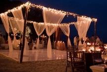 Wedding / by Sophia Brown-Parrish