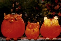 Halloween and Fall Ideas / by Nicohle Mackey