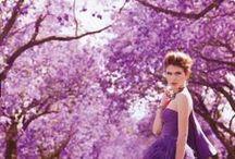 i like purple / by FOLLOW BEST