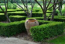 Garden Hedges / #hedges #garden #landscaping #outdoor + living #topiary / by Alicia Stavropoulos