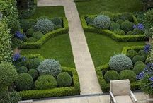 Garden Topiaries / #topiary #topiaries #garden #landscaping #container + gardening #pots #urns / by Alicia Stavropoulos