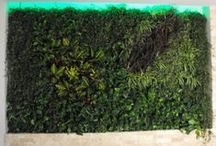 Green Walls @ Restaurant / Green Walls @ Restaurant