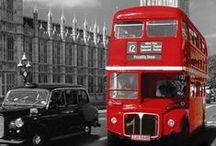 Buses. / by Mr MGZR