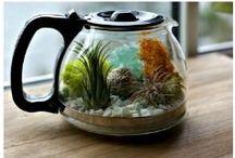 DIY: Let's Get Crafty! / Coffee + Tea Crafts + DIY Projects