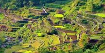 Philippines / Explore the Philippines like a pro with these Philippines travel tips and itineraries.