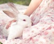 ♡All about Easter♡