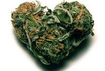 ... pot for peace, realize & legalize