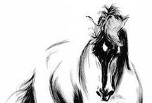 Kresba Koňa / Ako nakresliť Koňa