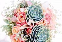 Succulent wedding. / Let love grow <3