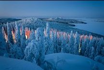 Suomi = Finland => winter / cold as ice, soft as snow