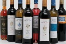 Our Products / A selection of the wines we sell in our online shop www.drinkportuguesewine.co.uk/shop