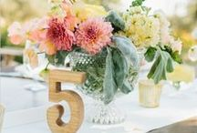 Hochzeitsdeko / Ja, ich will! Pompons, Girlanden, Vasen, Menükarten, Tischnummern, Tortendeko, Gastgeschenke, Blumendeko uvm. - Die schönste Deko für den schönsten Tag im Leben.