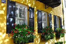 Charleston, SC / The Lowcountry of SC - beauty, businesses and history.