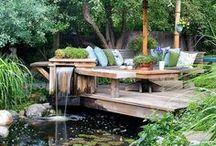 HOME | Gardening | Ponds & Waterfalls