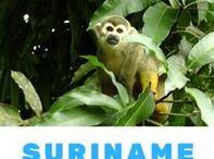 Suriname, Guyana and French Guiana - Corners of the World