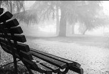 Una mattina di nebbia / Reportage fotografico nel centro storico di Castelfranco Veneto  dell'11 novembre 2015 - classe VA Liceo artistico