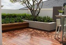 Home Decor - Plants / Garden