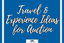 Travel and Experience Ideas for Auction