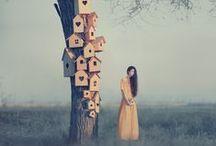 Surrealism | Photomanipulation / Photography