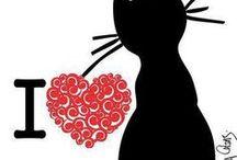 CATS / Nejen černé kočky