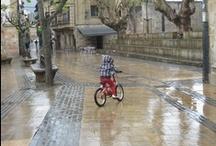 Bici: usos y usuarios / ¿Quién, cómo, donde y para qué utiliza la bici?