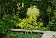 green / Gardens, landscaping