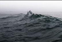 The Ocean bed.