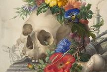 OSCAR OSBONE / Notre libraire recruté en CAVA (Contrat Ad vitam aeternam) aime les squelettes, skeleton, skull, crâne, bones ...
