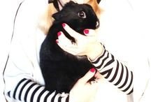 ME & MY BUNNY / We simply love each other! ;-)