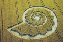 Just crop circles / Fascinating shapes cut into crops - a mysterious phenomenon