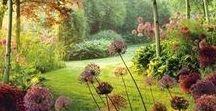 Krásná zahrada, beautiful garden / Inspirace a chytré nápady pro krásnou, užitečnou a útulnou zahradu. Rozvržení zahrady na odpočinkovou a hospodářskou část, chov slepic, vlastní výroba kurníků.