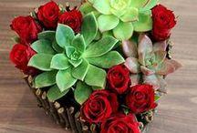 Valentýn / Valentýnská výzdoba, jednoduché recepty na Valentýna, tipy na valentýnské dárky, valentýnské tvoření, výzdoba a dekorace diy, Valentýn pro děti a s dětmi