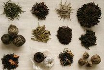 Teas / Exploring different type of teas