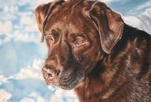 Dog portraits / Dog portraits done in pastel on velour.  Every piece of art is specifically created for the dog's owner.  It's great if I can meet and photograph the dog but if you have a clear photo you love I can work from that.  Watch your portrait come to life online with progress pictures.