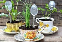 Creative DIY Ideas / Fun ideas for the great outdoors and more.