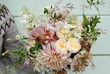 Compositions Florales / La Rose Anglaise offre de magnifiques compositions florales